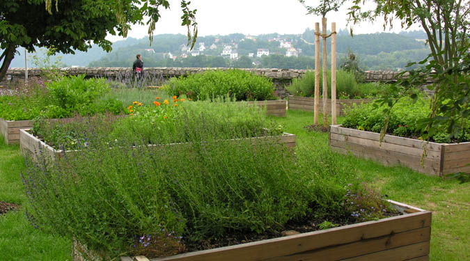 A Kitchen Garden with a View