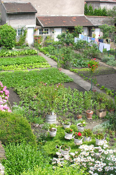 French backyard kitchen garden